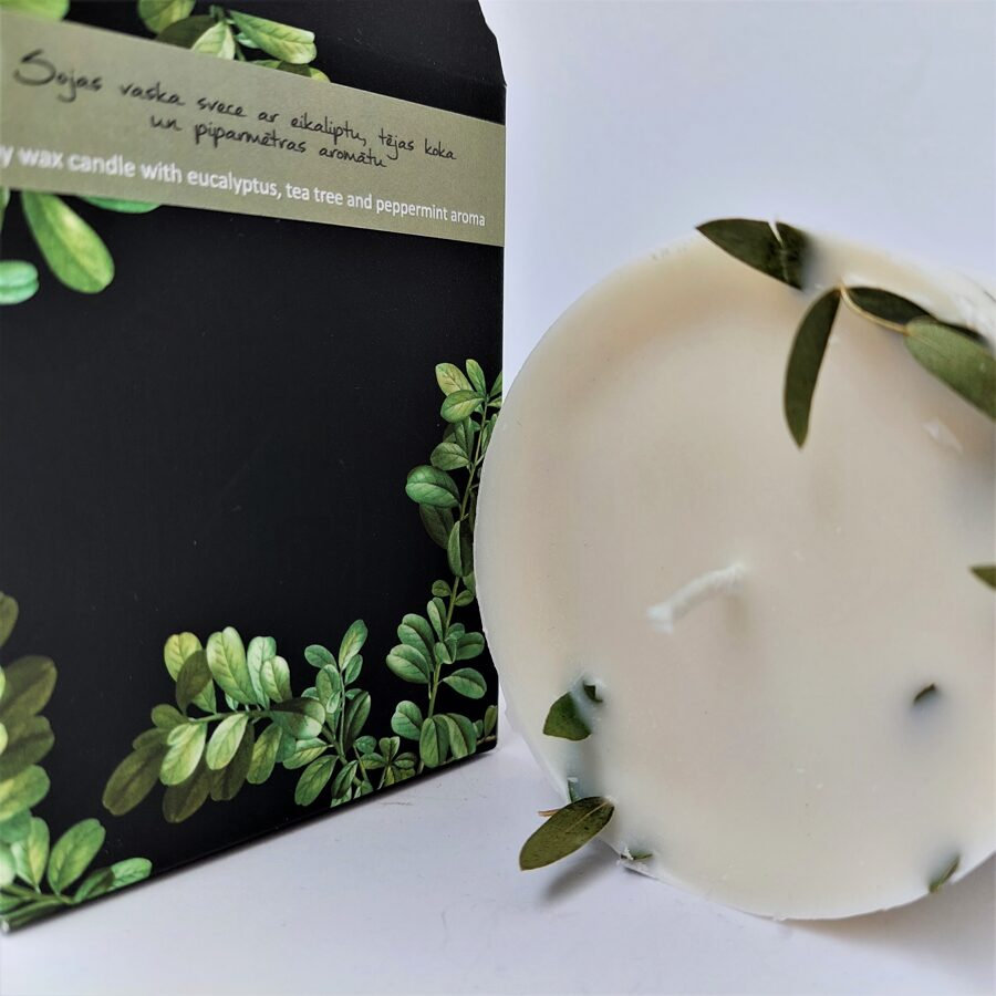Soy wax candle with eucalyptus leaves and eucalyptus, tea tree and mint aroma - L size