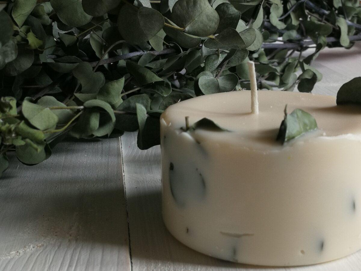 Sojas vaska svece ar eikaliptu un eikalipta, tējas koka un piparmētras aromātiem
