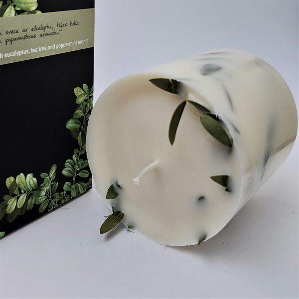 Sojas vaska svece ar eikaliptu un eikalipta, tējas koka un piparmētras aromātiem - L- izmērs